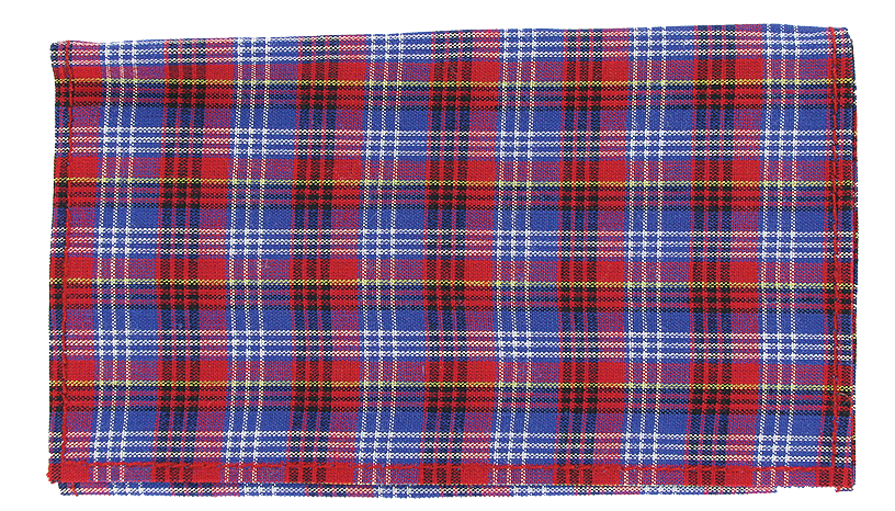 Plaid Roll Up Blue - Click for details